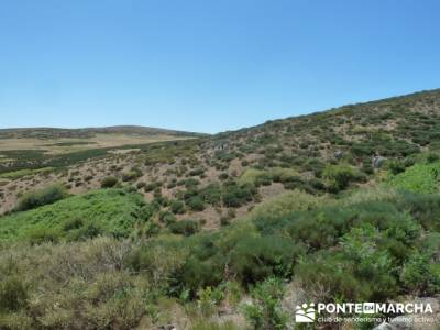 Pinar de Canencia y Mina de Plata del Indiano; viajes en mayo;clubes de montaña madrid